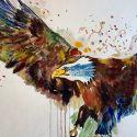 aquarellen-vogels-003