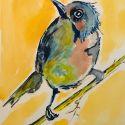 aquarellen-vogels-005