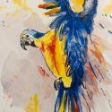 aquarellen-vogels-008